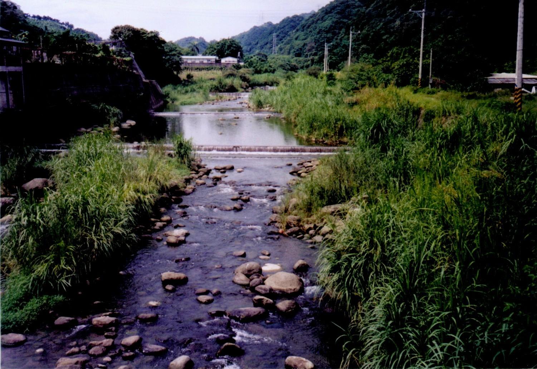近自然式水污染生態化整治-04